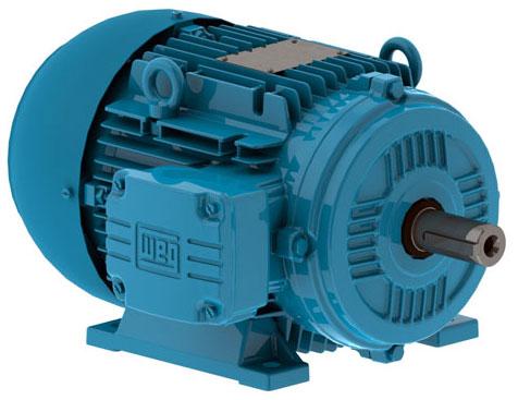 Motores elétricos - dicas, função, tipos, passo a passo